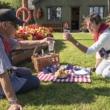 picnic 2 reduced